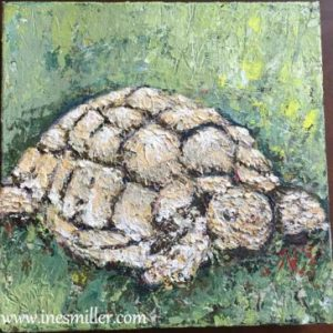 Wandering Free- Palette Knife Painting for sale Sulcata Tortoise Original Acrylic Painting